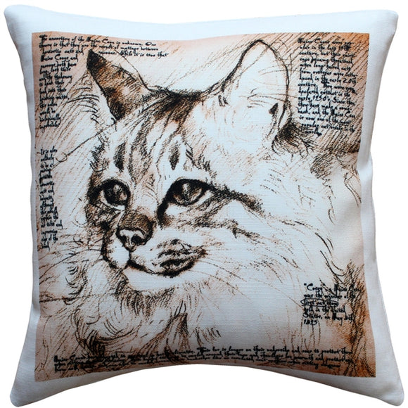 Maine Coon 17x17 Cat Pillow