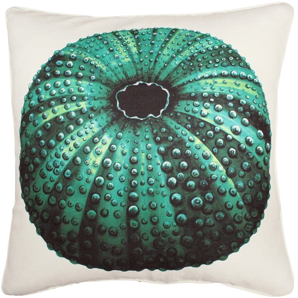 Jekyll Island Sea Urchin Throw Pillow 26x26