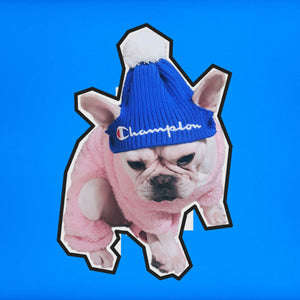 Champup Pompom Beanie for Dogs