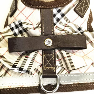LV & Burberry Spring 2019 Harness