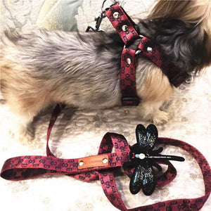 Gucci Dragonfly Harness & Leash Swag Set