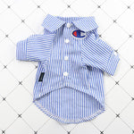 Champion Job Interview Button Up Shirt