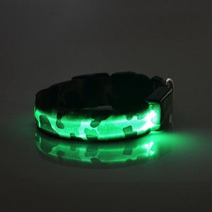 Necklace - Collar LED Glowing Unique Dog Collar - Mr Dogy - Fashion Shop
