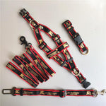 Burberry Harness Collar Set