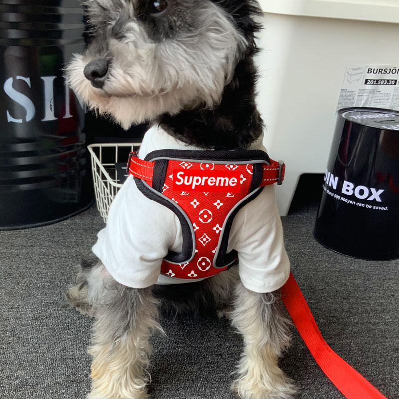 Supreme LV All eyez on me Harness & Leash Limited set