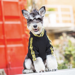 Pupwhite Black & Yellow Hype Hoodie (HOT ITEM!)
