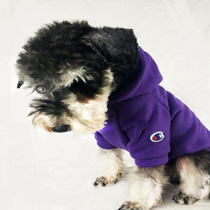 Purple Pup Champ Rocky Dog Hoodie