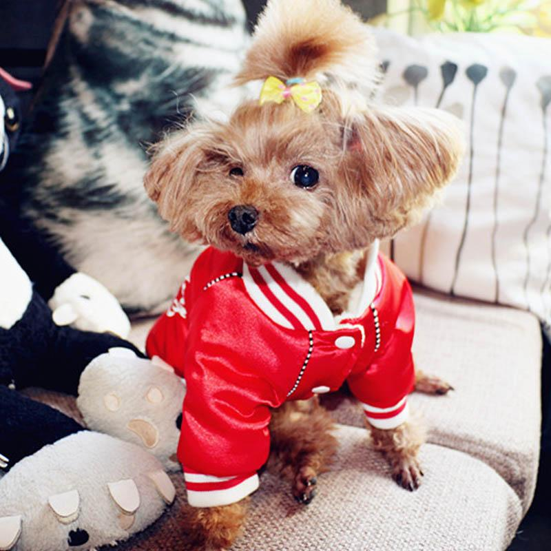 Dog Baby Home run Swag Jacket (HOT ITEM!!!)