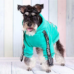 Pup White Bostin King Bull Dog Hoodie