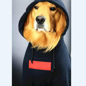 Pupreme Classic Hoodie for BIG DOGS!!!