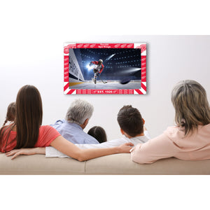 DETROIT REDWINGS BIG GAME TV FRAME