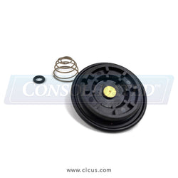 Burkert Viton Type 6211 Repair Kit [153086M]