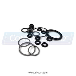 GA Braun Steam Valve Actuator Seal [V01120053]