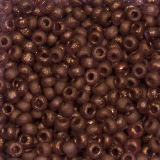 6/0 Czech Seed Bead - Crystal Etched Bronze