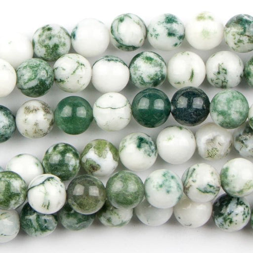 6mm Round TREE AGATE - 8 inch Strand