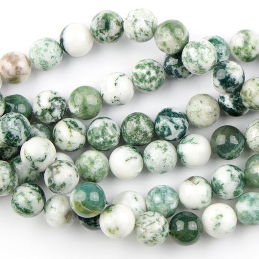 8mm Round TREE AGATE - 8 inch Strand