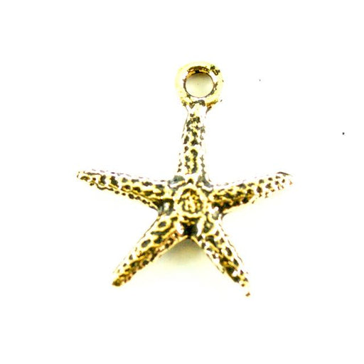 Seastar Charm - Antique Gold Plate