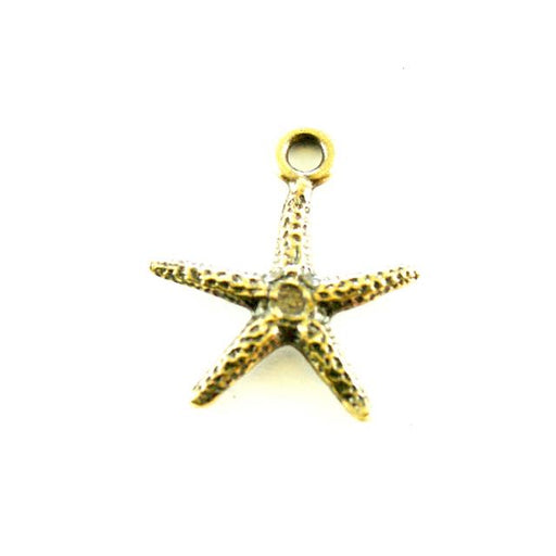 Seastar Charm - Oxidized Brass