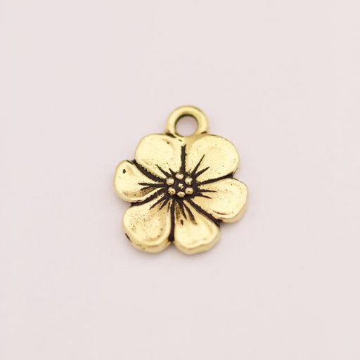 Apple Blossom Charm - Antique Gold Plate