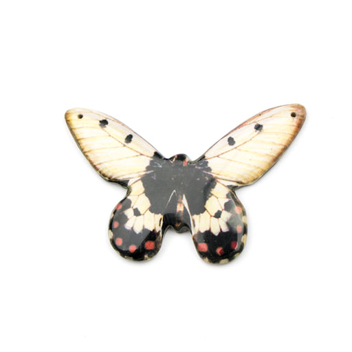 71.0mm x 50.0mm Paper Print Wrapped Laminated Oressid Butterfly***