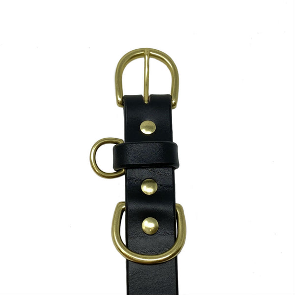 Last State Leather - Large Dog Collar - Black/Brass - Front