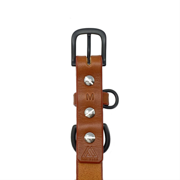 Last State Leather - Medium Dog Collar - Chetnut/Black - Back