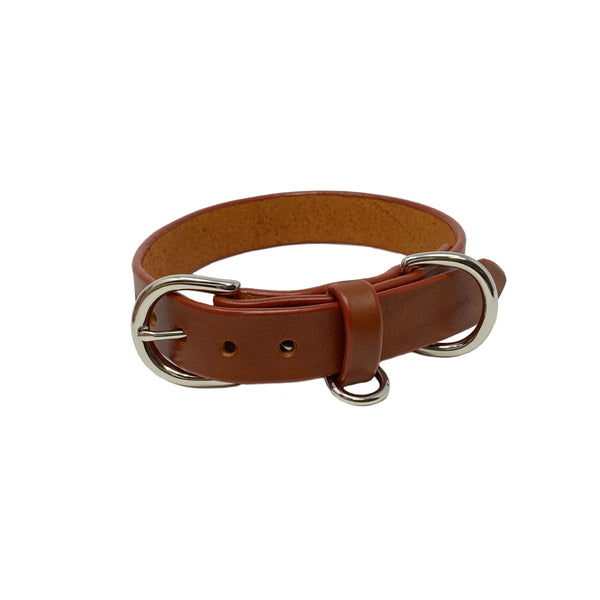 Last State Leather - Medium Dog Collar - Chestnut/Nickel
