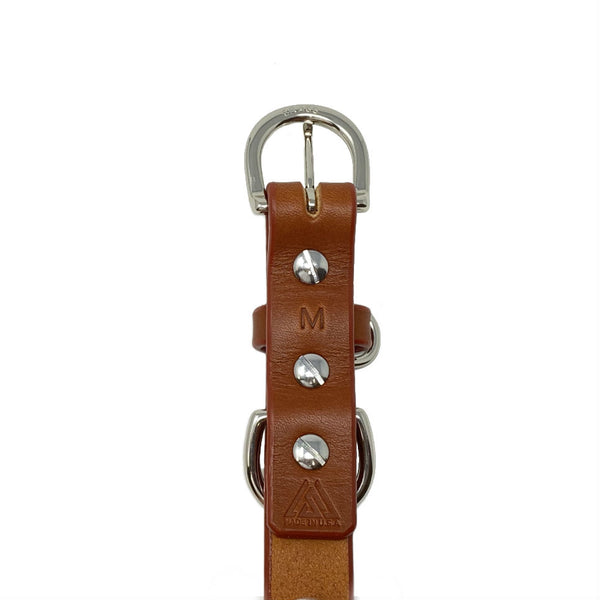 Last State Leather - Medium Dog Collar - Chestnut/Nickel - Back
