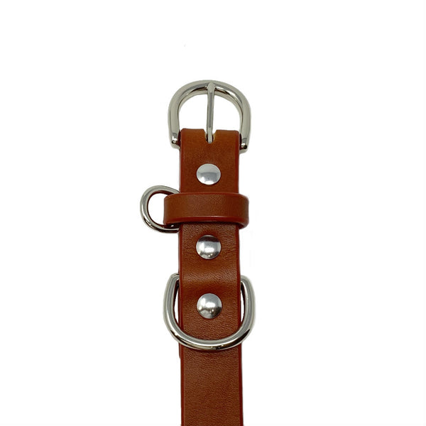 Last State Leather - Medium Dog Collar - Chestnut/Nickel - Front