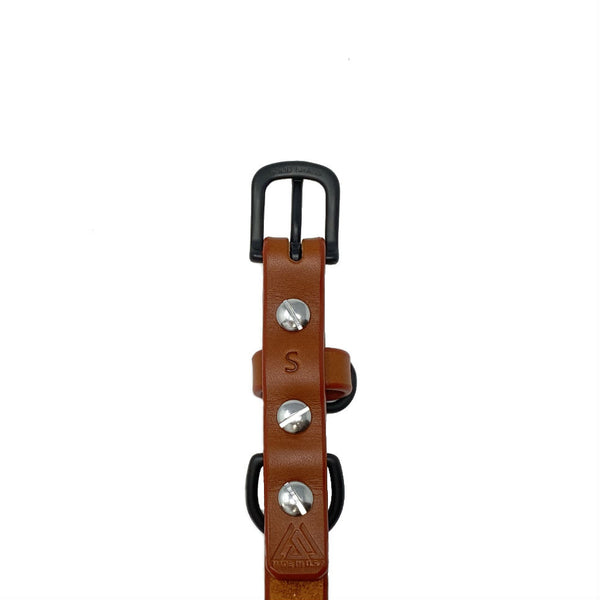 Last State Leather - Small Dog Collar - Chestnut/Black - Back