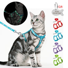 Load image into Gallery viewer, Nylon Cat Harness and Leash Set With Customized Id Tag Cats kitten Harnesses Anti Lost Name Tag Free Engraving Blue Red