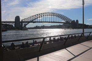 The famous Sydney Harbour Bridge