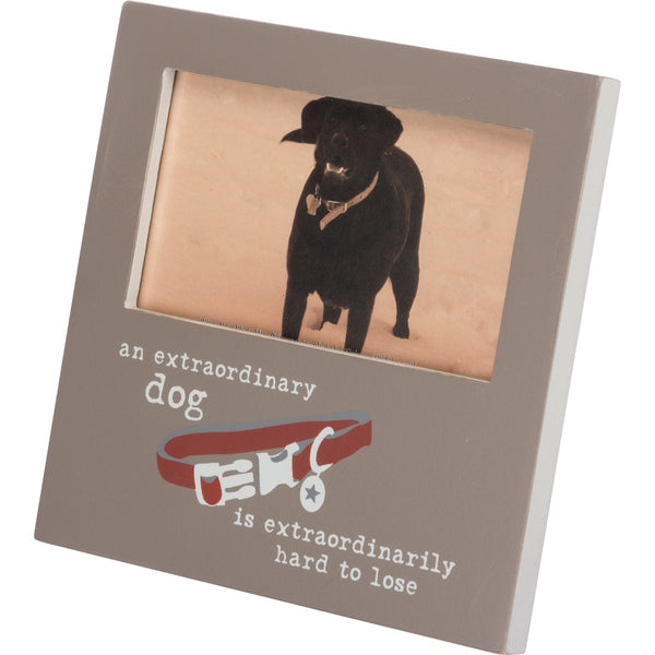 AN EXTRAORDINARY DOG PHOTO FRAME