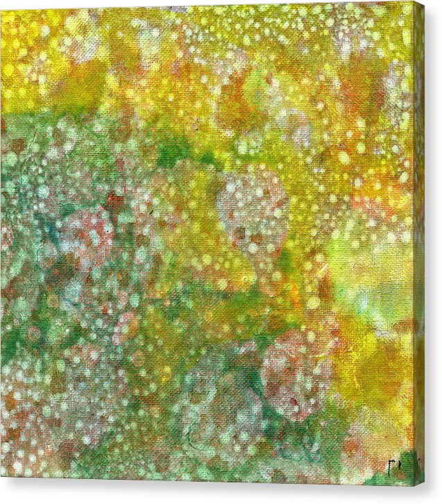 Kappa 29b Abstract - Canvas Print