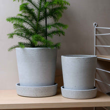 Load image into Gallery viewer, hubsch-grey-concrete-planter-with-saucer