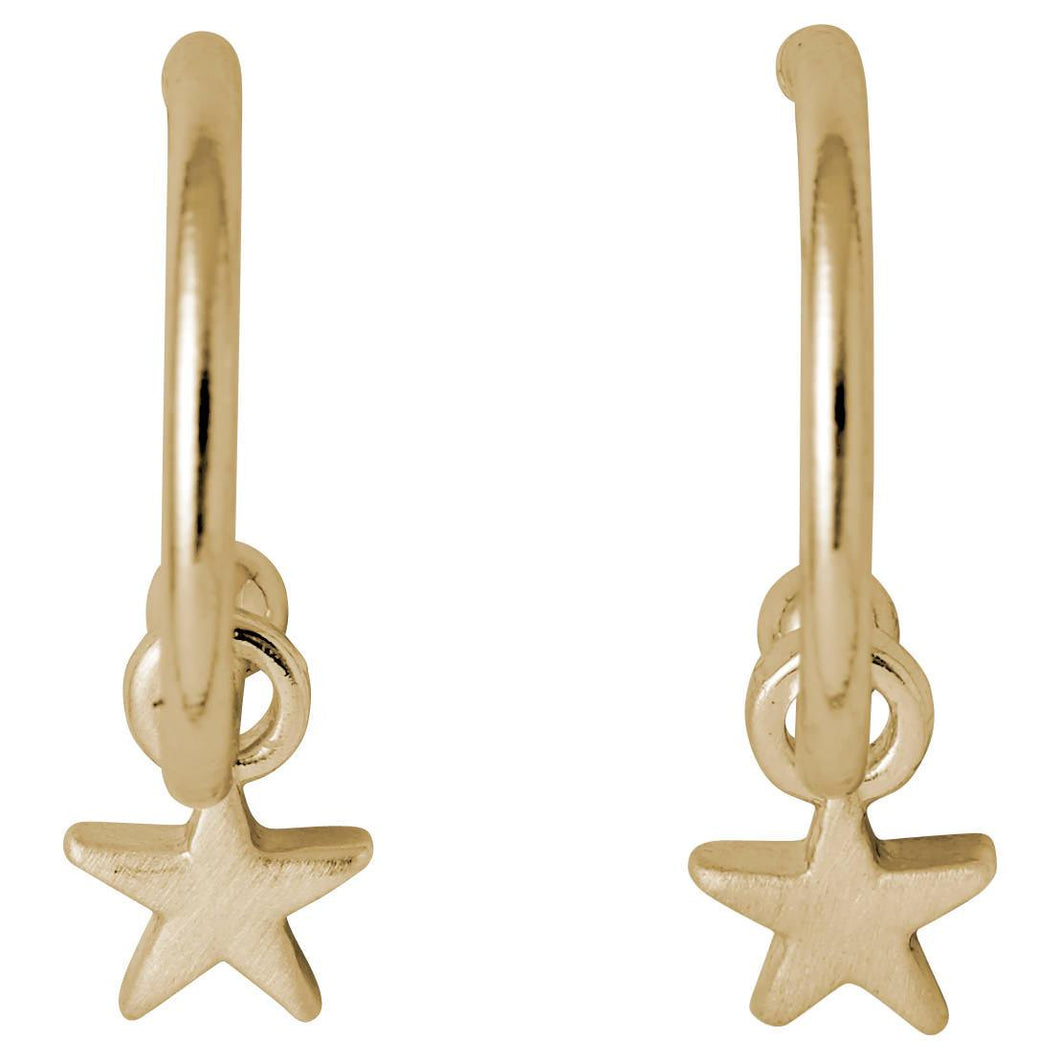 Pilgrim Ava Star Hoops