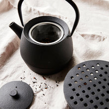 Load image into Gallery viewer, Black Cast Iron Tea Pot