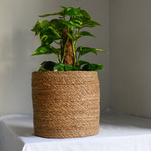 Load image into Gallery viewer, rattan-planter-for-plants