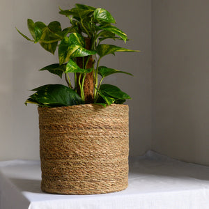 Natural Jute Planter in Five Sizes