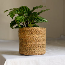 Load image into Gallery viewer, Natural Jute Planter in Five Sizes