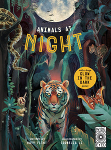 Animals at Night (Glow in the Dark) by Katy Flint & Cornelia Li