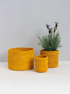 Yellow Rafia Storage Pots in Three Sizes