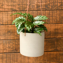 Load image into Gallery viewer, hubsch-interiors-hanging-stoneware-planters