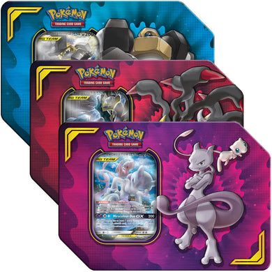 Pokemon TCG Power Partnership Tin - The Feisty Lizard