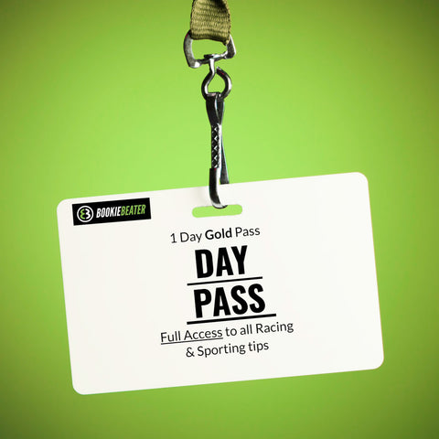 1 DAY GOLD PASS - 24 HOURS