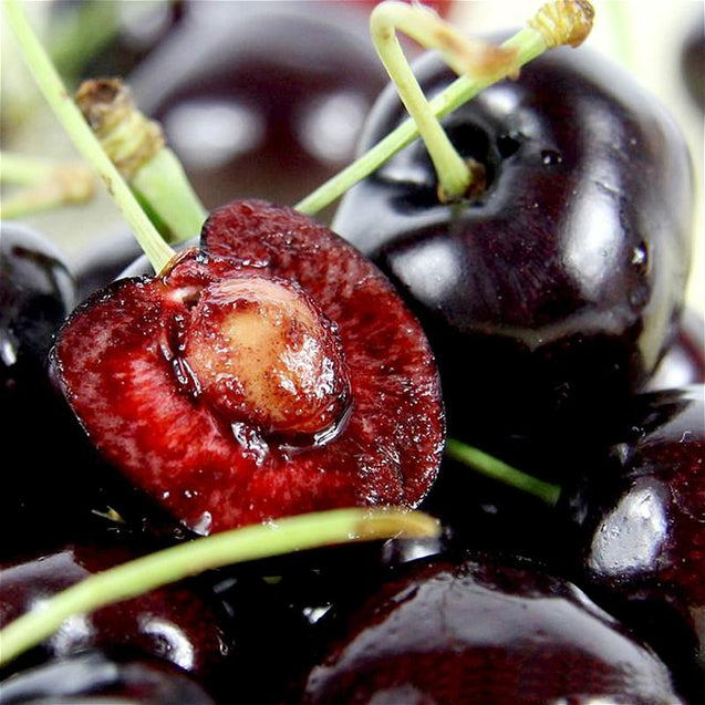 Egrow 20Pcs/Pack Black Red Cherry Seeds Balcony Organic Fruits Seed Potted Bonsai Plant