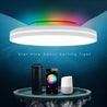 OFFDARKS AC220-240V 36W 420mm Ceiling Lamp Bedroom Kitchen LED Ceiling Light RGB Dimming APP WIFI Voice Control with 2.4G Remote Controller