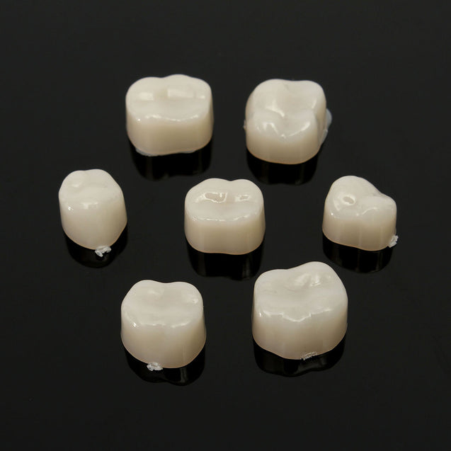 2 packs Dental Temporary Crown Material for Anterior + Molar Teeth Veneers