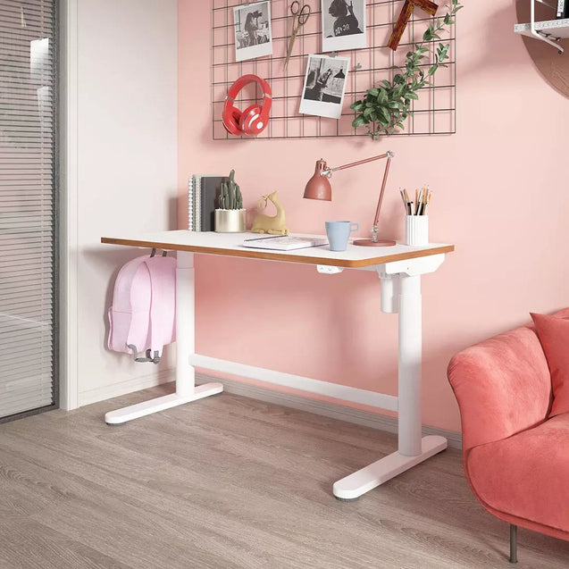 Loctek Electric Height Adjustable Desk Standing Desk Writting Table Studying from Childhood to Adult For Home Office