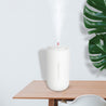 Mini Essential Oil Aroma Diffuser With LED Light Oil Diffuser Ultrasonic Air Aroma Humidifier